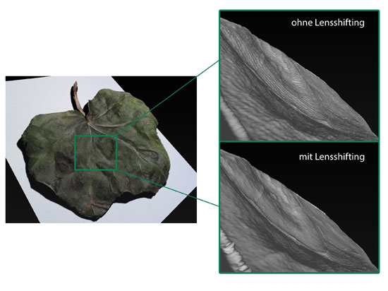 Leaf (without and with lenseshifting), scanned with Meso-Scanner V1 © 3D model: Fraunhofer IGD